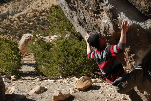 Evan - Planet of the Apes V6/7